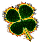 Flaming four-leaf clover for St. Patricks Day